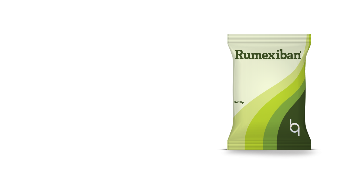 Rumexiban® / Professional Solution for Stomach and Bowel Problems